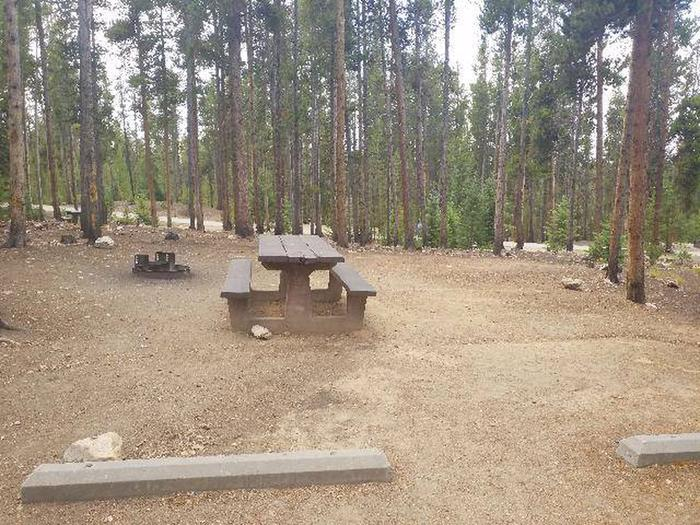 Baby Doe Campground, site 42 table and fire ring