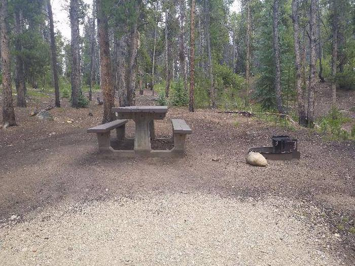 Baby Doe Campground, site 43 table and fire ring