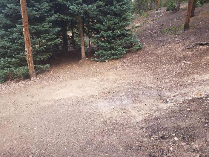 Baby Doe Campground, site 43 clearing