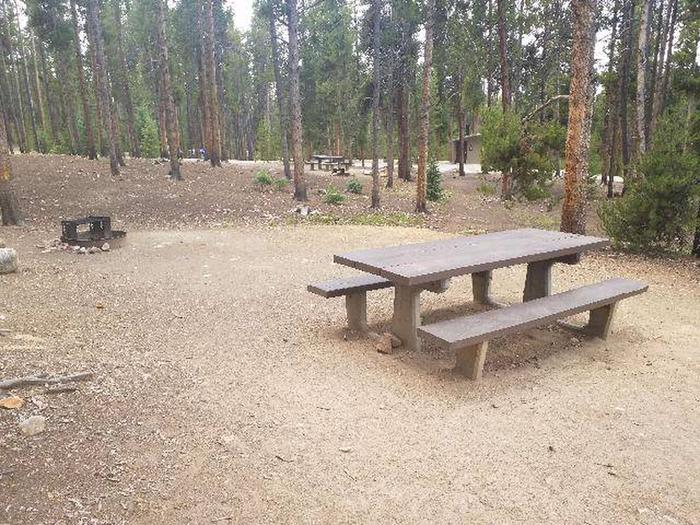Baby Doe Campground, site 44