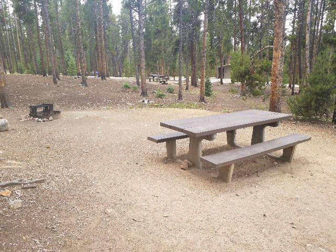 Baby Doe Campground, site 44 table and fire ring
