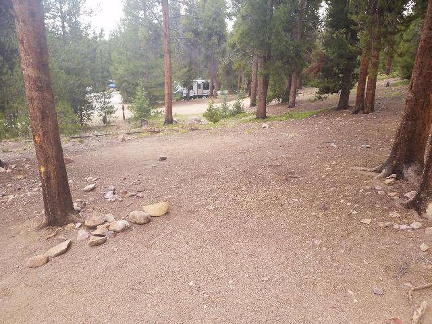 Baby Doe Campground, site 46 clearing 2
