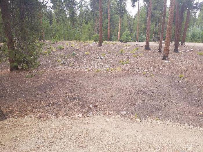 Baby Doe Campground, site 47 clearing