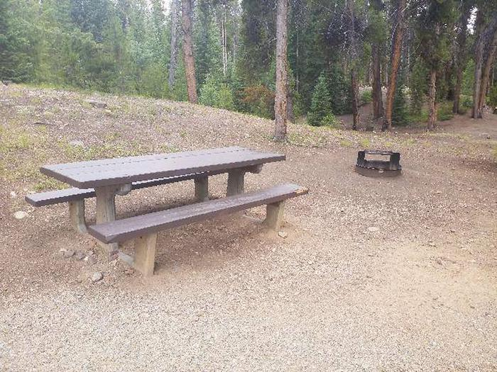 Baby Doe Campground, site 47 table and fire ring