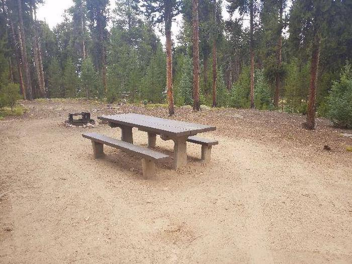Baby Doe Campground, site 49 table and fire ring