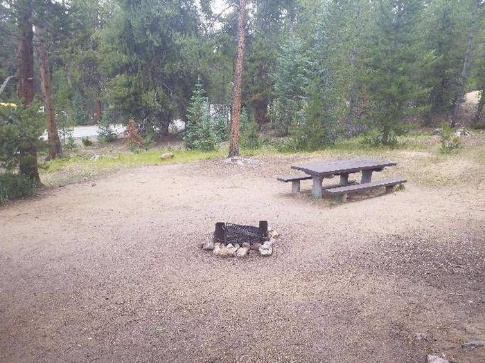 Baby Doe Campground, site 50 table and fire ring