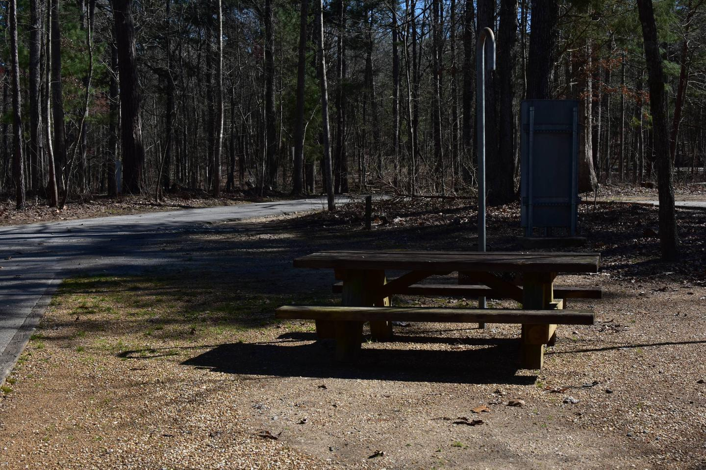 Hoot Owl Site 59-5Hoot Owl Site 59, March 6, 2020