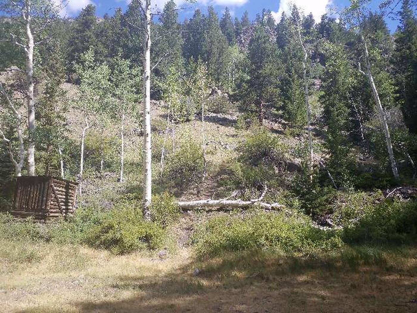 Dawson Cabin back view