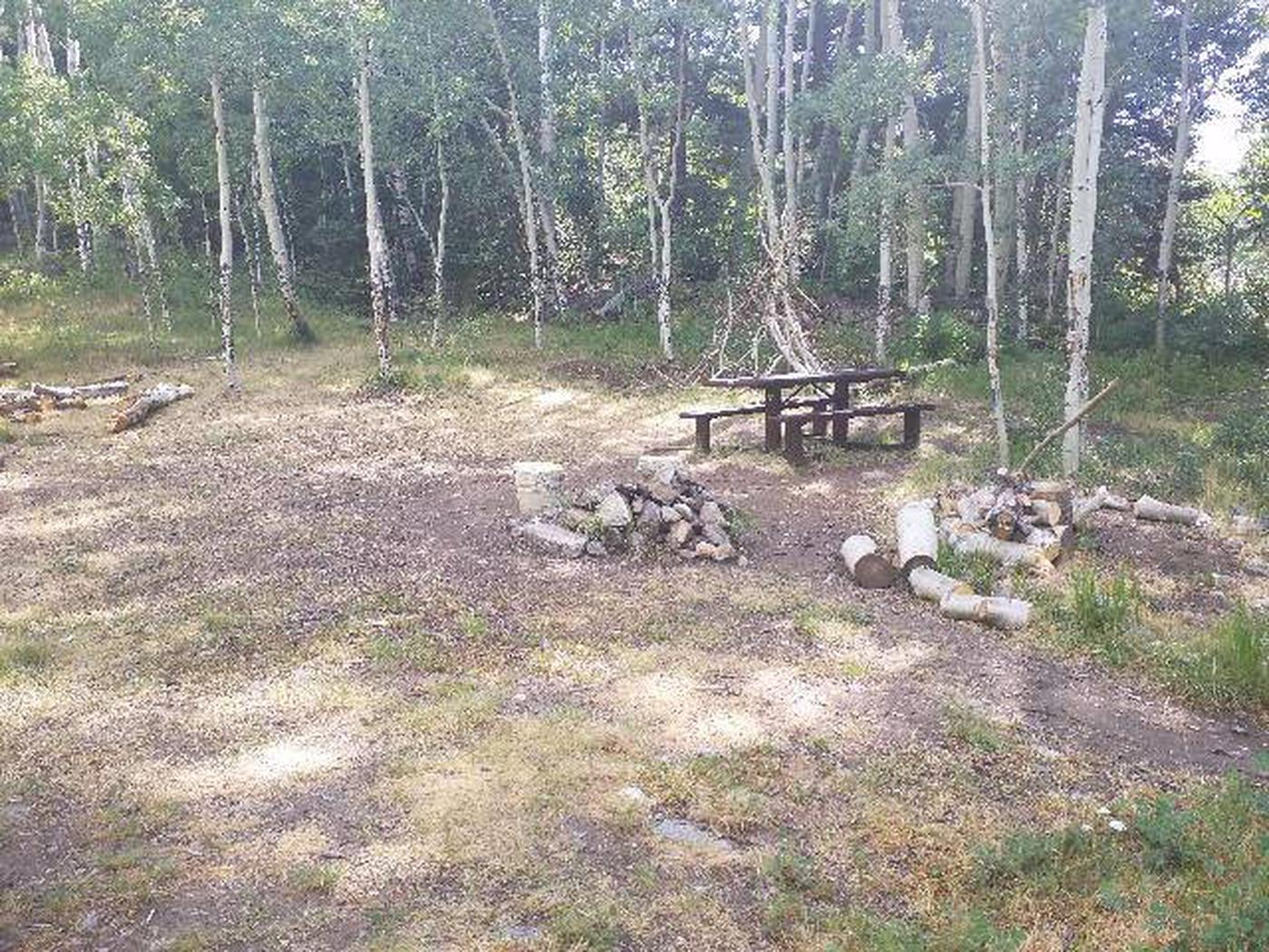 Dawson Cabin table and fire ring