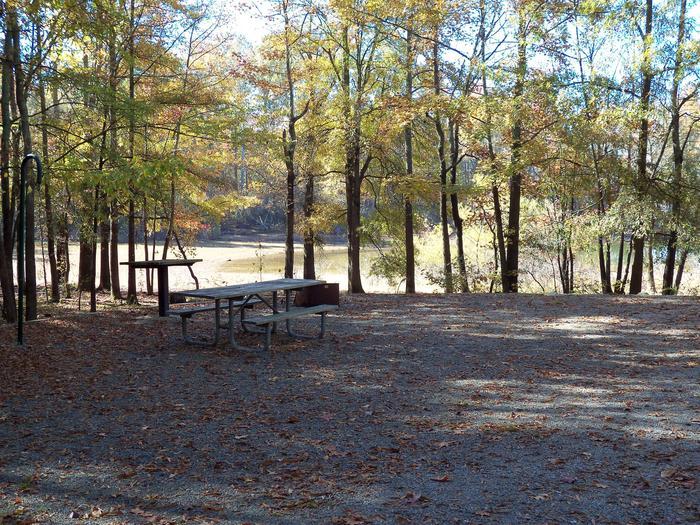 Longwood CampgroundCampsite #28
