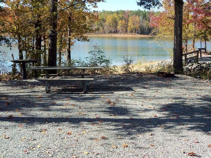 Longwood CampgroundCampsite #37