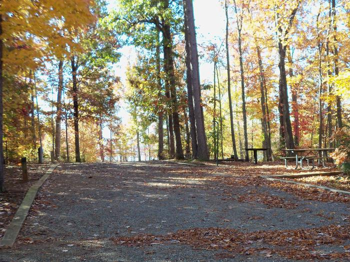 Longwood CampgroundCampsite #39D