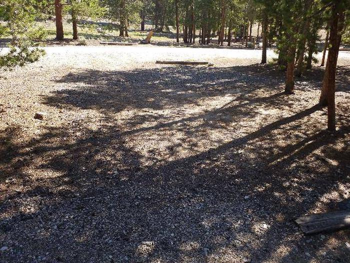 Lakeview Campground, Site A5 clearing