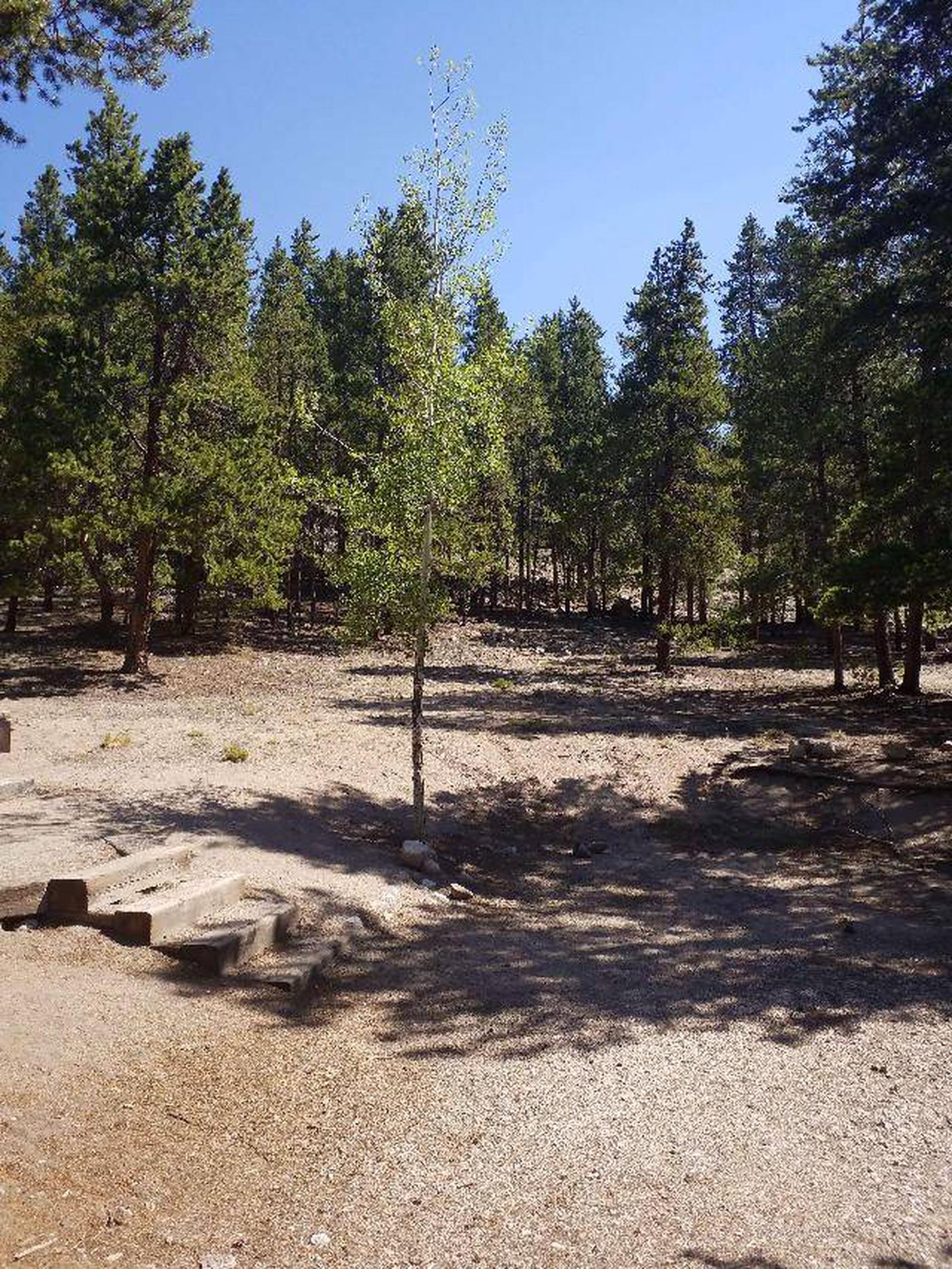Lakeview Campground, Site A6 view