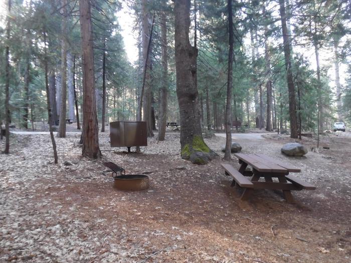 Campsite 4