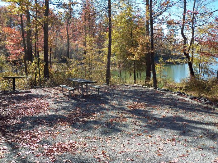 Longwood CampgroundCampsite #43