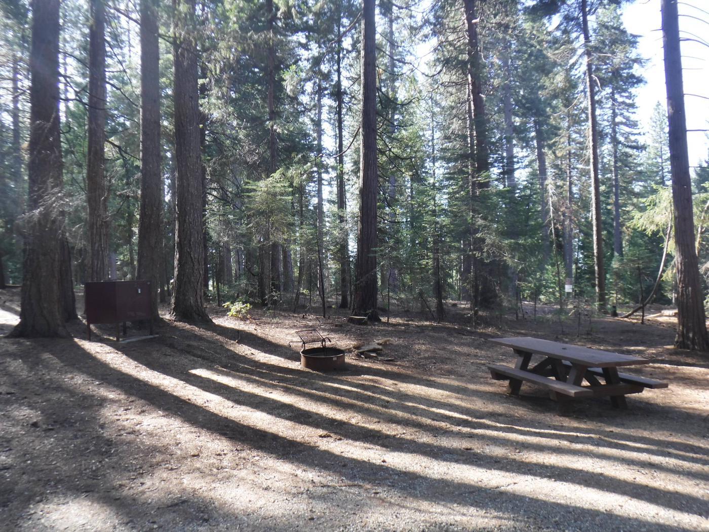 Campsite 11