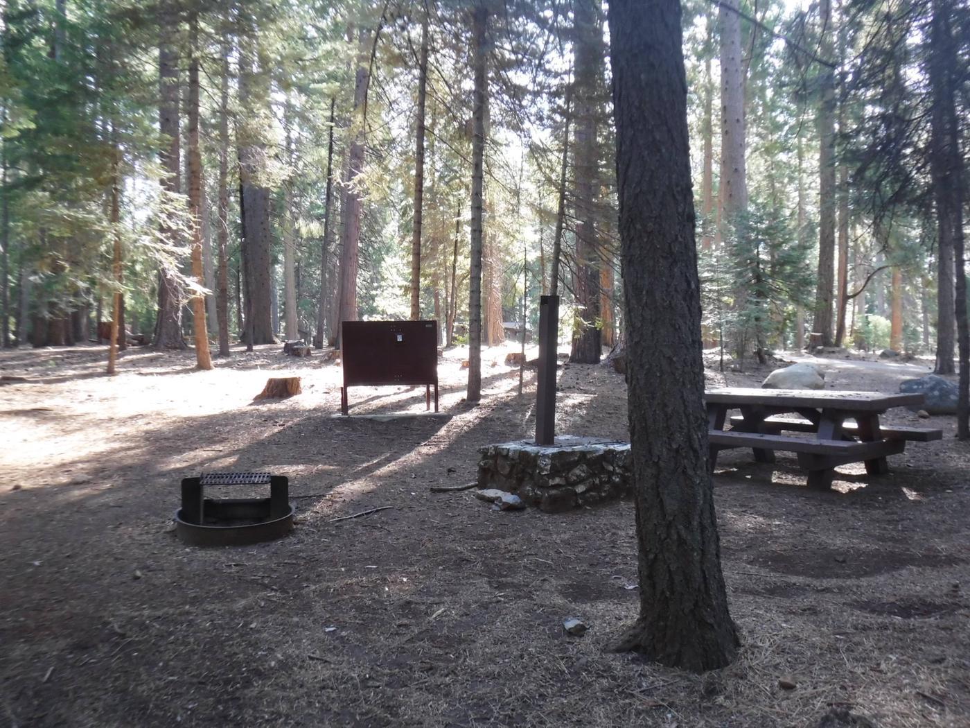 Campsite 12
