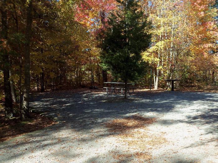 Longwood CampgroundCampsite #45