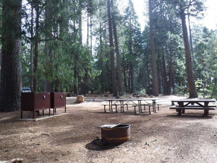 Campsite 15 Picnic Tables