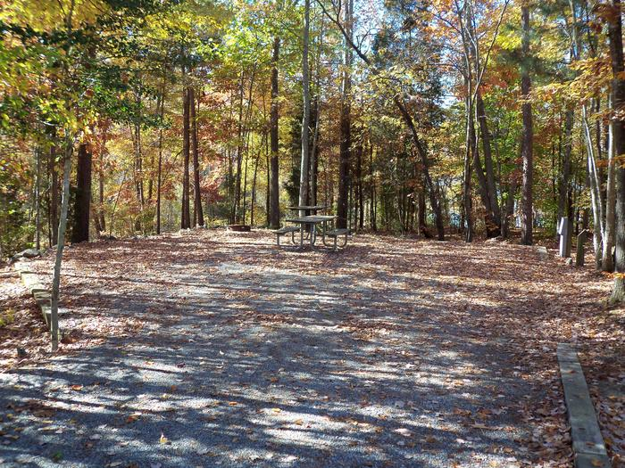 Longwood CampgroundCampsite #47