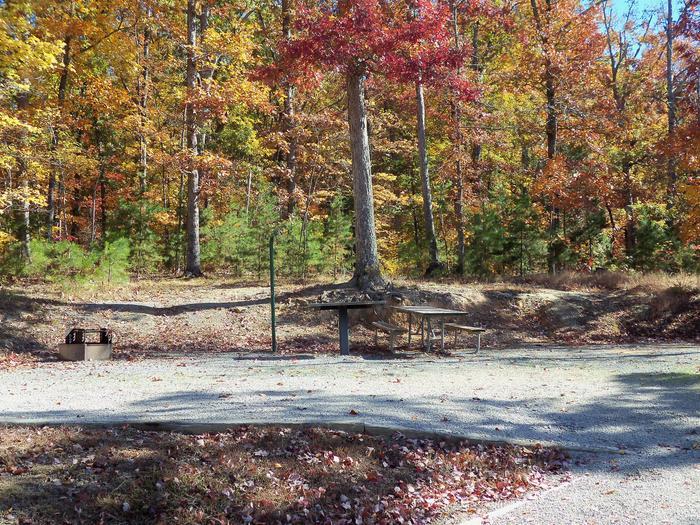 Longwood CampgroundCampsite #49