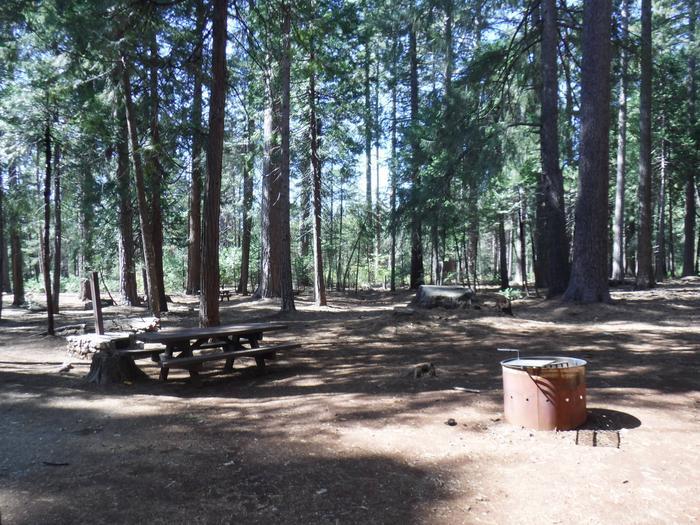 Campsite 32