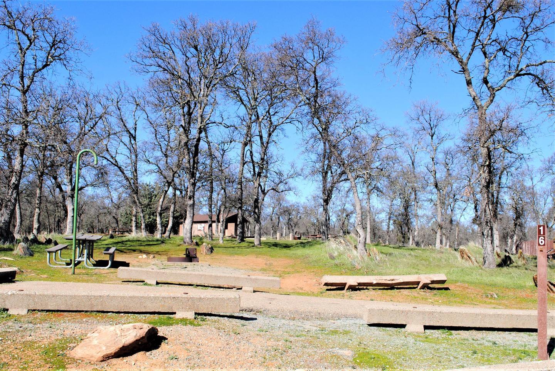 Acorn Campground Site 16Slip