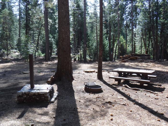 Campsite 41