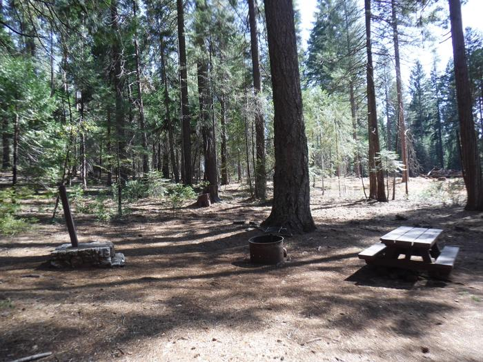 Campsite 42