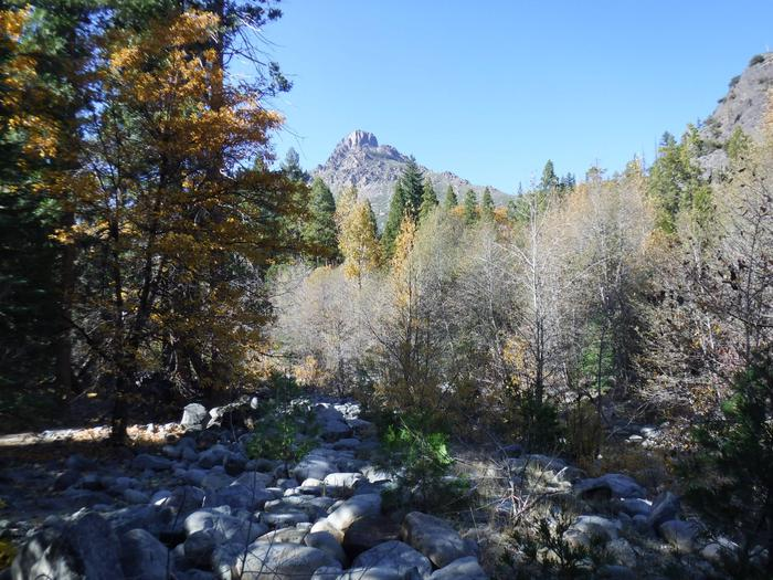 View of Sierra Buttes from Wild Plum Campground