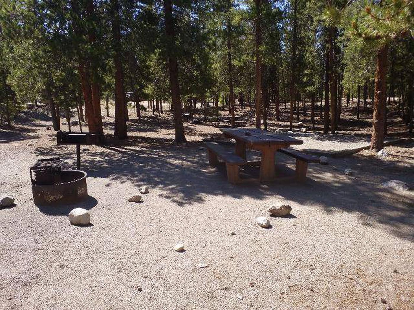 Lakeview Campground, Site A7 table and fire ring