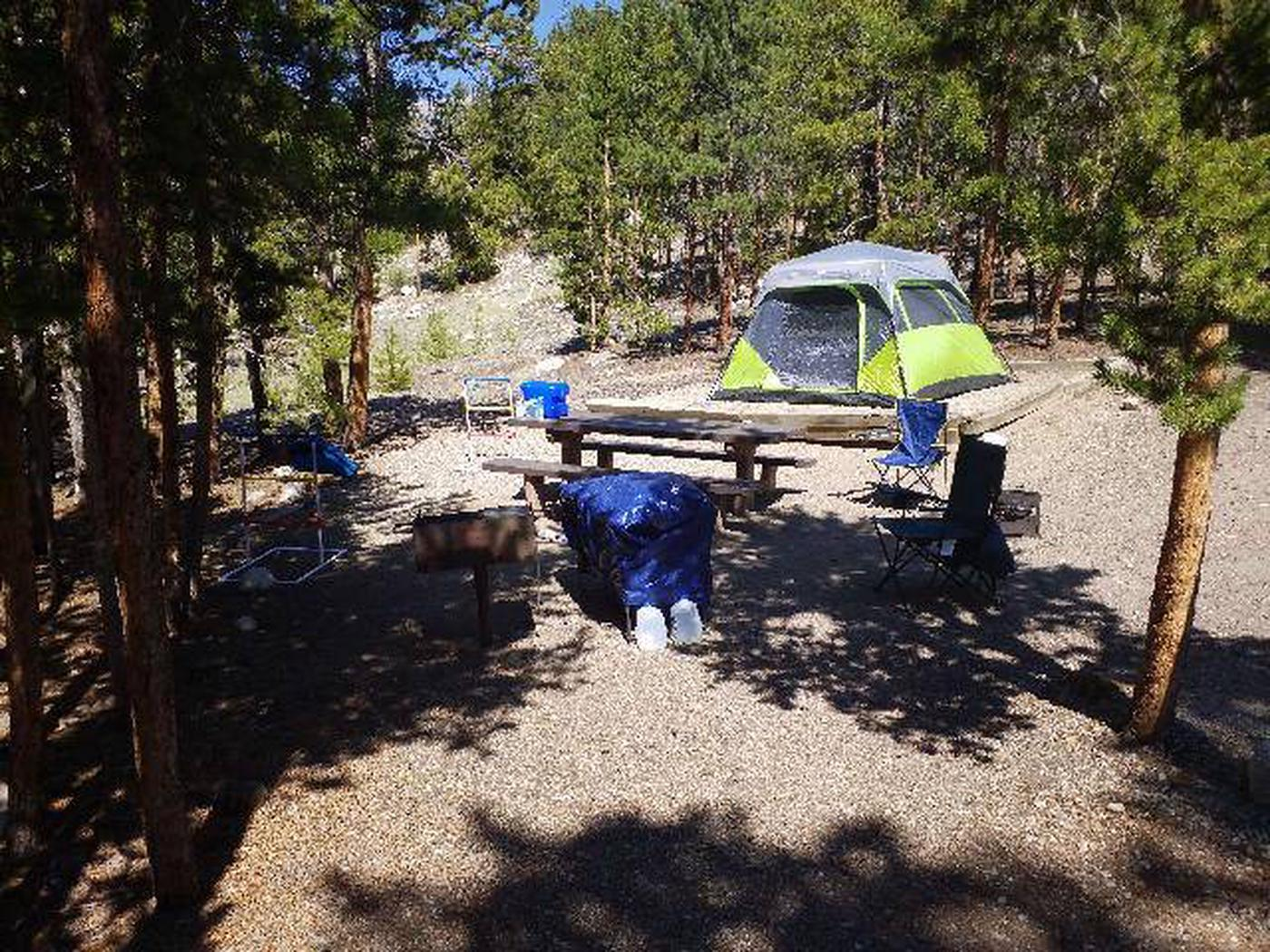 Lakeview Campground, site A8 camping area
