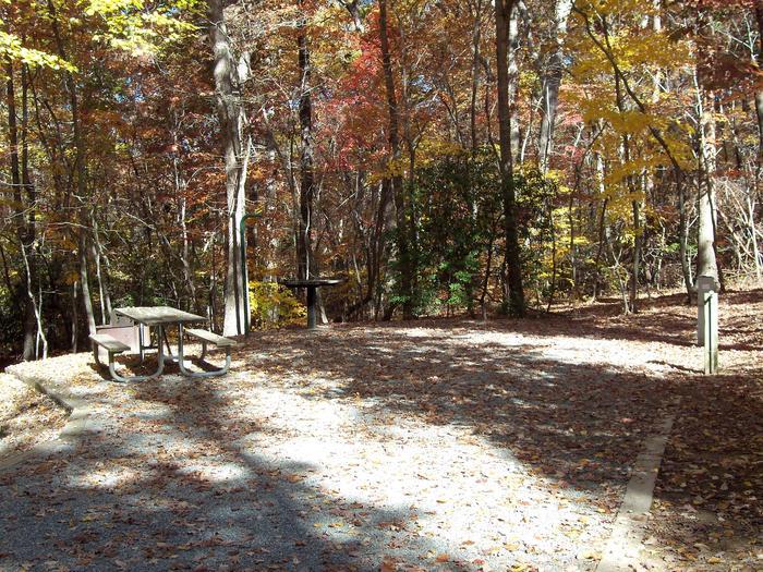Longwood CampgroundCampsite #54