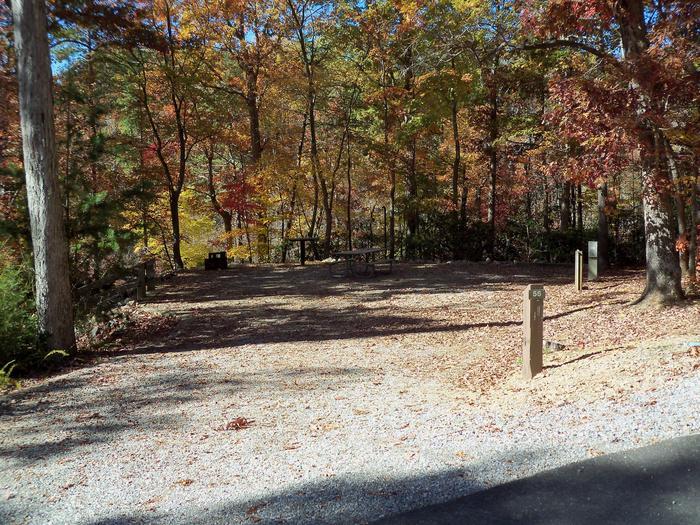 Longwood CampgroundCampsite #56