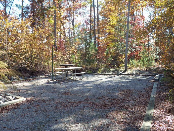 Longwood CampgroundCampsite #64