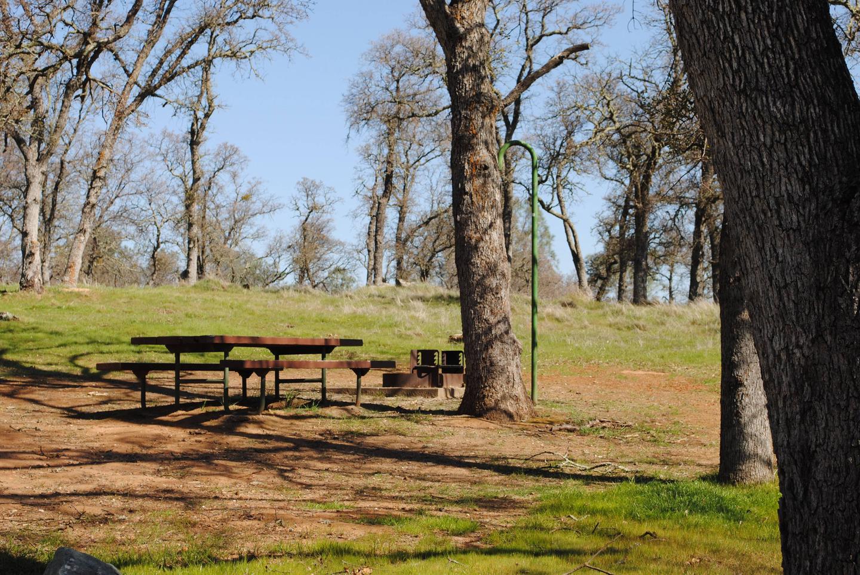 Acorn Campground Site 33 campPull through