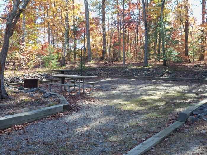 Longwood CampgroundCampsite #65