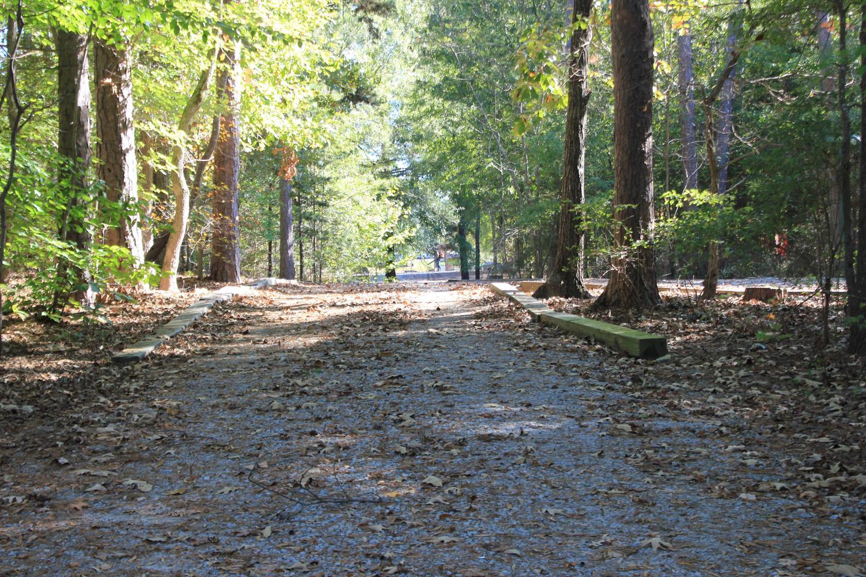 Longwood CampgroundCampsite #66