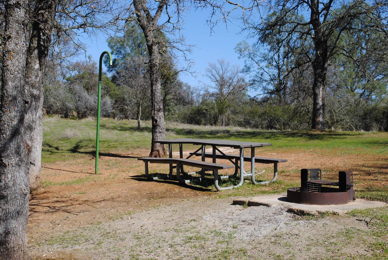 Acorn Campground Site 43 campSlip