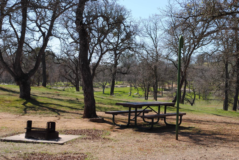Acorn Campground Site 57 campSlip