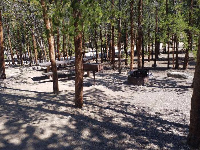 Lakeview Campground, site A12 picnic table and fire ring