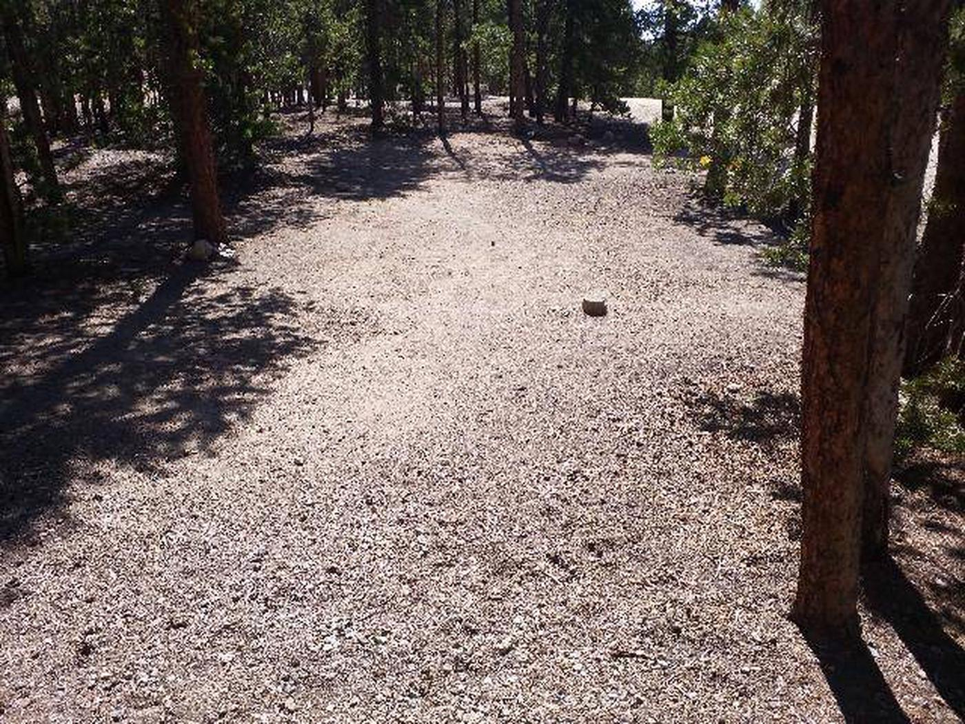 Lakeview Campground, site A12 clearing