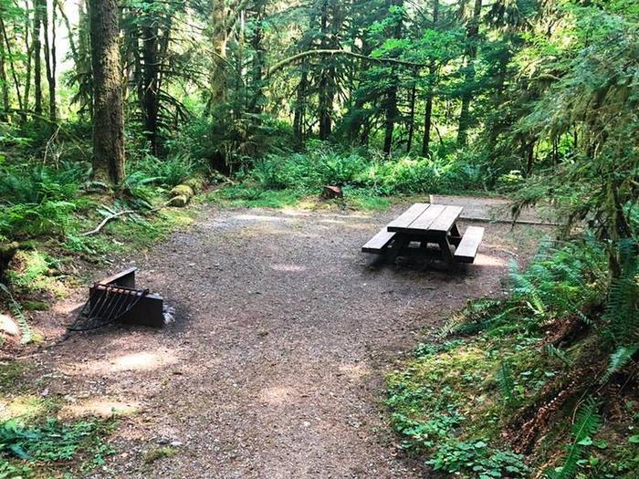 Gold Basin CampgroundSite 21
