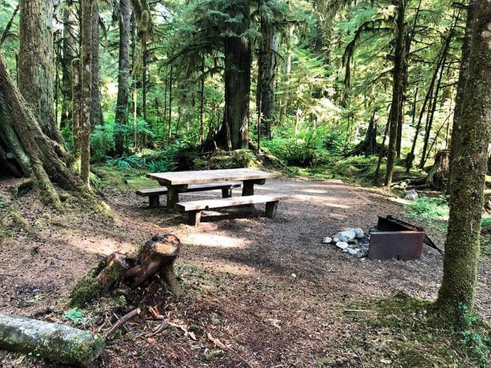 Gold Basin CampgroundSite 54