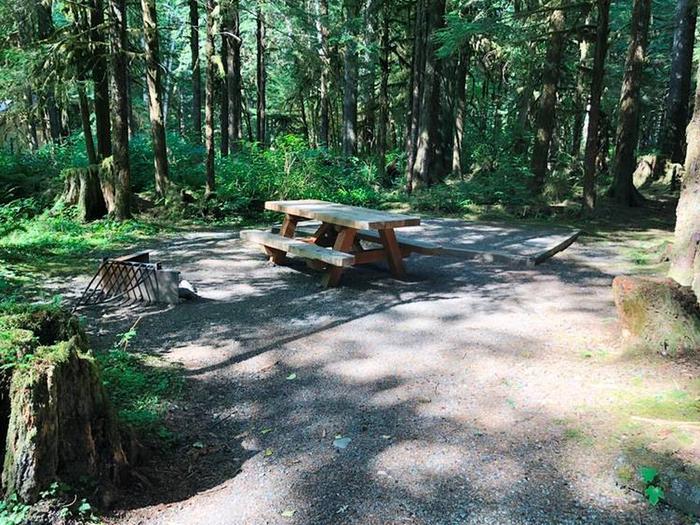 Gold Basin CampgroundSite 58