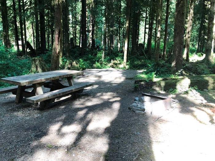 Gold Basin CampgroundSite 62
