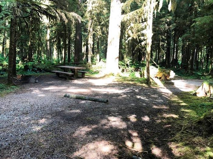 Gold Basin CampgroundSite 66