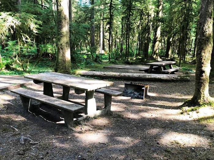 Gold Basin CampgroundSite 68