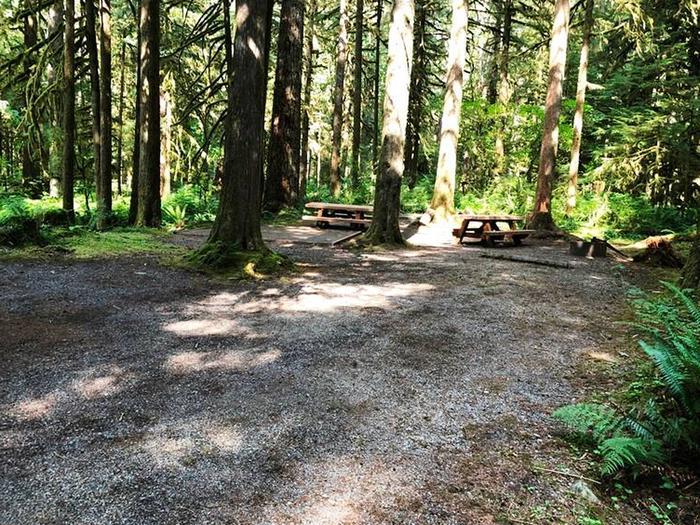 Gold Basin CampgroundSite 70